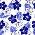 Pattern of the hibiscus i drew for a design this painting continues repeatedly it is a vector work Royalty Free Stock Image