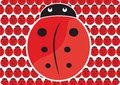 Pattern ladybug big red with white outline on background with many small ladybugs Royalty Free Stock Image