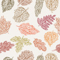 Pattern with leaves Stock Photography