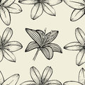 Pattern of Lily flowers