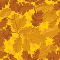 Pattern of oak autumn leaves. seamless pattern. Stock Photo