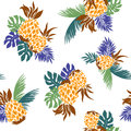 Pattern of pineapple i drew a for a design this painting continues repeatedly it is a vector work Royalty Free Stock Photos