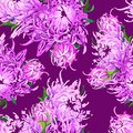 Pattern of piony flowers vector background beauty Royalty Free Stock Photo