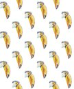 Pattern of portraits of toucans with a large beak