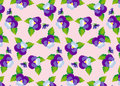Pattern purple pansies Royalty Free Stock Photo