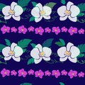 Pattern with purple and white orchids Royalty Free Stock Photo