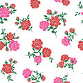Pattern of rose i made a beautiful a painting this painting continues repeatedly i worked in vectors Royalty Free Stock Photos