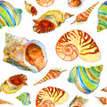 Pattern with seashells seamless watercolor made by artist Stock Images