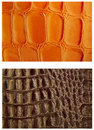 Pattern snake skin leather Royalty Free Stock Photo
