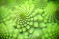 Pattern of spiral Royalty Free Stock Photo