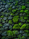 Green rock background Royalty Free Stock Photo