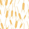 Pattern wheat grain harvest