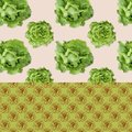 Patterned Background - Salads