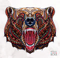 Patterned head of the growling bear Royalty Free Stock Photo