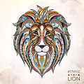 Patterned head of lion Royalty Free Stock Photo