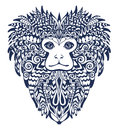 Patterned Head of the Lion Tamarin. Royalty Free Stock Photo