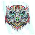 Patterned head of owl on the grunge background.