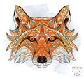 Patterned head of the red fox Royalty Free Stock Photo