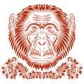 Patterned monkey head Royalty Free Stock Photo