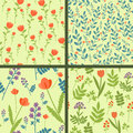 Patterns set collection of four seamless floral Stock Image