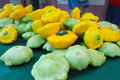 Pattypan or Sunburst Squash Royalty Free Stock Image