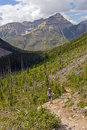 Pausing to enjoy the view on a mountain trail hiker stanley glacier in kootenay national park in british columbia Royalty Free Stock Image