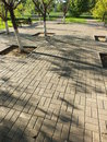 A paved area with shadows from trees Stock Photography