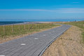 Paved cycling track in dunes newly built through the near the hague netherlands Royalty Free Stock Photo