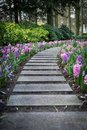 Paved pathway with flowers on sides Royalty Free Stock Photo