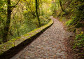 Paved road in fragas do eume natural park pontedeume galicia spain Stock Photo