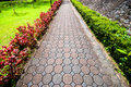 Pavement made of stone in beautiful garden Royalty Free Stock Images