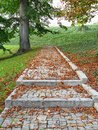 A pavement in the park in autumn Royalty Free Stock Photo