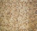 Pavement texture Royalty Free Stock Photo
