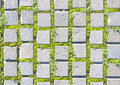 Paving stone style with grass seamless pattern Royalty Free Stock Photo