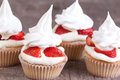 Pavlova cupcakes horizontal picture of Stock Photography