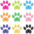 Paw Prints Stock Image