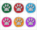 Paw Prints Identity Tags Stock Photo