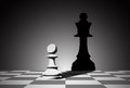 Pawn picture of chess droping shadow of a queen strenght aspiration and leadeship concept Royalty Free Stock Photos