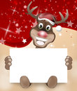 Paws Rudolf