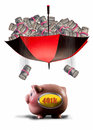 Payday of cash into k pink piggy bank Stock Photo