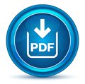 PDF document download icon eyeball blue round button