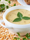 Pea cream soup in a white tureen food close up Royalty Free Stock Photography