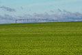 Pea Field and Irrigation Sprayer Royalty Free Stock Photo