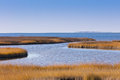 Pea Island NWR Royalty Free Stock Photo