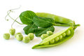 Pea pod Royalty Free Stock Photo