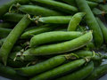 Pea pods. Royalty Free Stock Photo