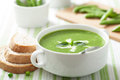 Pea soup with mint green Stock Photography
