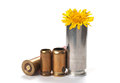 Peace not war used bullet casings with flower on white shadow and Stock Images