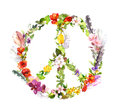 Peace sign with flowers, feathers in boho style. Watercolor Royalty Free Stock Photo