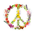 Peace sign - flowers and feathers in boho style. Watercolor Royalty Free Stock Photo